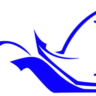 Physa Logo